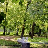 В парке осенью  /2/ :: Сергей