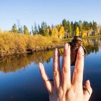 осенний привет от лягушечки... :: Светлана