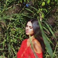 единение с природой :: Виктория Левина
