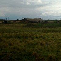 Осеннее поле :: Николай Филоненко