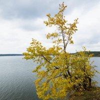 Над водой :: Исаков Александр
