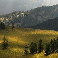 И луч дневной, горит в горах на рёбрах туч 5 :: Сергей Жуков