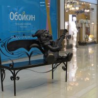 Мегацентр на Кубани. Посидим с весёлым котом! :: Татьяна Смоляниченко