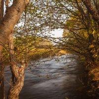 Осень :: Сергей Сол