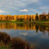 Солнце вышло :: Владимир Миронов