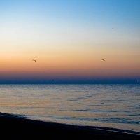 Море :: Viktoria Tkach