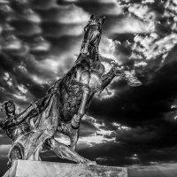 Укрощение коня :: Александр Неустроев