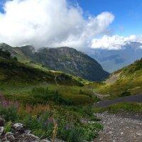 Альпийские луга Кавказа :: Kogint Анатолий