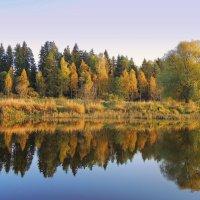 Осень золотая.Тверца :: Павлова Татьяна Павлова