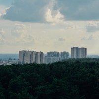 Город с высоты птичьего полёта :: Света Кондрашова