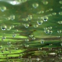 Чудо воды :: Тамара Лисицына