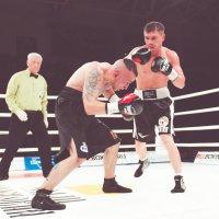 Профи в ринге :: Александр Колесников