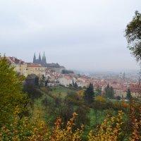 Загадочная Прага :: Ольга