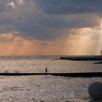 Хмурый морской закат. :: Алексей Хаустов