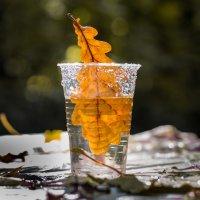 осень в стакане :: Денис Антонов