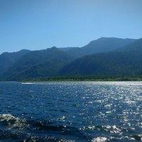 Республика Алтай, Телецкое озеро :: Елена Бушуева