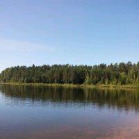 Раздумья у реки Оредеж. :: Жанна Викторовна