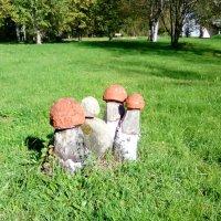 """Скульптура """"Красные грибочки"""", сделана из камня. ( Санаторий """"Заря"""", п. Репино) :: Светлана Калмыкова"""