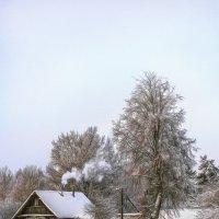 Зимняя сказка :: Алексей Румянцев