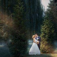 Свадебная фотокартина :: Ирина Митрофанова студия Мона Лиза