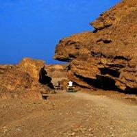Гонки по пустыне :: Alexander Andronik