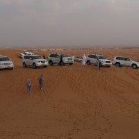 Джиперы в  пустыне :: Виталий  Селиванов
