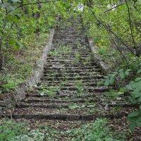 Заброшенная лестница к разрушенному храму. :: Александр Морозов