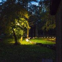 В парке Кырлай в Казани :: Ильназ Фархутдинов