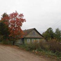 Осень в деревне :: BoxerMak Mak