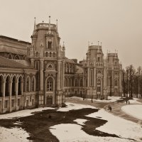 Царицынский дворец :: Владимир Брагилевский