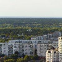Новосибирск :: Дима Пискунов