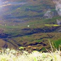 Время сентябрьской воды :: Татьяна Литвинова