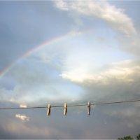 Верёвка с прищепками :: Елена Исхакова