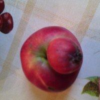 Осень шла, шла, шла и яблоко нашла! :: Ольга Кривых