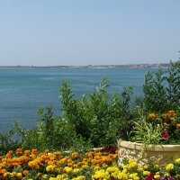 Море :: Grey Bishop