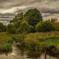 Река Дрезна сентябрь 2016 :: Андрей Дворников