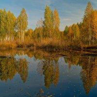 Осенние отражения :: Александр Смирнов