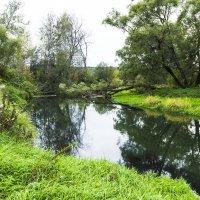 р.Истра в монастырском парке :: jenia77 Миронюк Женя