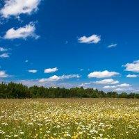 Лето в раю :: Александр Горбунов