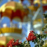Осень :: Сергей Елесин