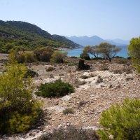 На острове Мони (Греция). :: Нелли Семенкина