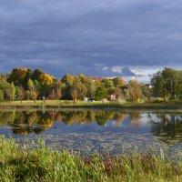 Осеннее отражение. :: zoja