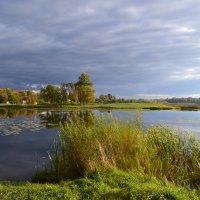 Осени краса. :: zoja