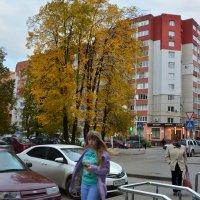 На улице имени поэта (панорама) :: Александр Буянов