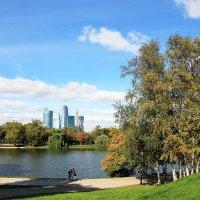 Парк «Новодевичьи пруды» :: Иван