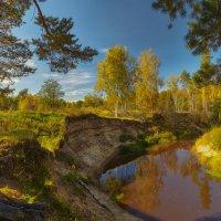 Красно-жёлтые дни...© :: Roman Lunin
