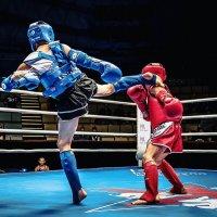 Спортсмены в ринге :: Александр Колесников