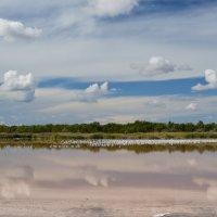 Озеро Мойнаки :: Игорь Кузьмин