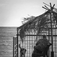 У моря погоды... :: Евгения Кирильченко