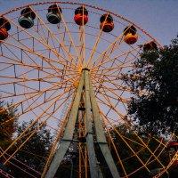 колесо обозрения в парке :: Света Кондрашова